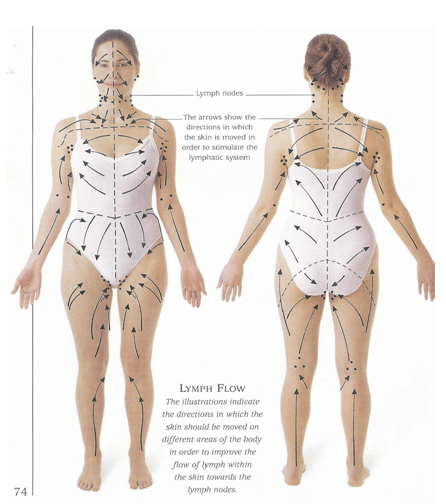 dry brush lymph nodes